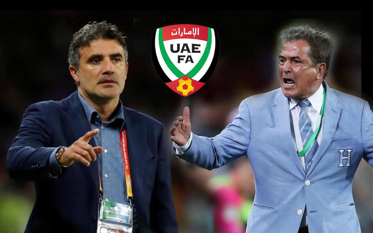uae coach